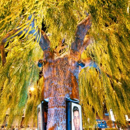 Media Tree - Willow