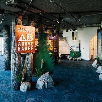 Exhibit entry showcasing Flexbark trees