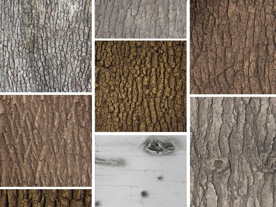 Flexbark texture grid